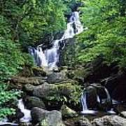 Torc Waterfall, Killarney National Art Print
