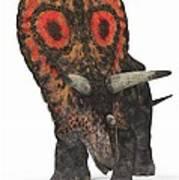 Torosaurus Dinosaur Art Print