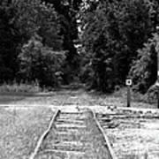 Abandoned Rails Art Print