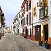 Traditional Houses In Cordoba Art Print