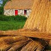 Traditional Thatching, Ireland Art Print