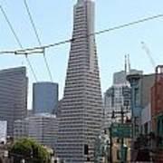 Transamerica Pyramid Through North Beach San Francisco . 7d7445 Art Print