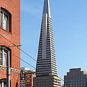 Transamerica Pyramid Tower In San Francisco . 7d7376 Art Print