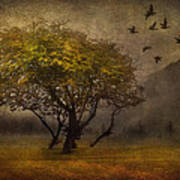 Tree And Birds Art Print by Svetlana Sewell