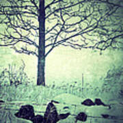 Tree And Fence In The Fog And Snow Art Print