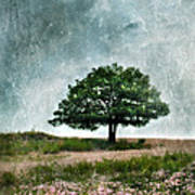 Tree And Wildflowers  Art Print