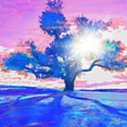 Tree Art 001 Art Print by Suni Roveto