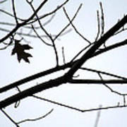 Tree Art Two Art Print
