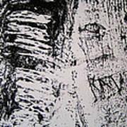 Tree Bark IIi Art Print