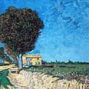 Tree House At A Farm Art Print