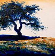 Tree Study 4 Art Print