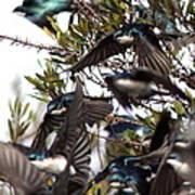 Tree Swallow - All Swallowed Up Art Print