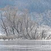 Trees On A Frozen Lake Art Print