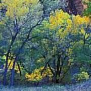 Trees On Edge Of Field In Autumn Art Print