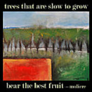 Trees That Are Slow To Grow Poster Art Print