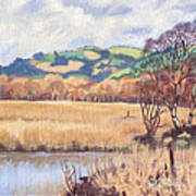 Cors Caron Nature Reserve Tregaron Painting Art Print
