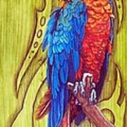 Tribal Macaw Art Print by Diana Shively