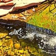 Trickle Waterfall Art Print