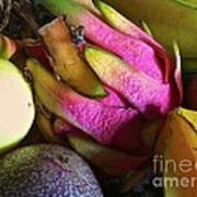 Tropical Fruit 3- Dragonfruit Arrangement Art Print