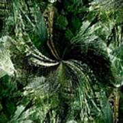 Tropical Rain Forest Art Print