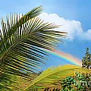 Tropical Rainbow Art Print