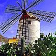 Tropical Windmill Art Print