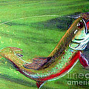 Trout On - Pastel Painting Art Print by Merton Allen