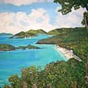 Trunk Bay Art Print