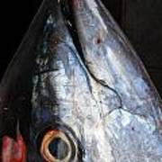 Tuna Head At Fish Market Art Print