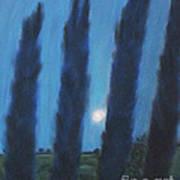 Tuscan Cyprus Trees Art Print