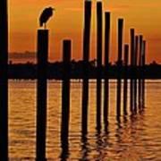 Twelve Poles At Sunset Art Print by Lynda Dawson-Youngclaus