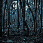 Twilight In The Smouldering Forest Art Print
