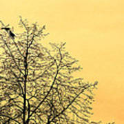 Two Birds In A Tree Art Print