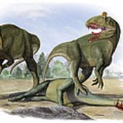 Two Cryolophosaurus Ellioti Dinosaurs Art Print