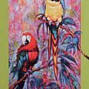 Captive Birds Of The Rain Forest Art Print