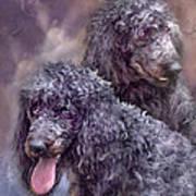 Two Poodles Art Print