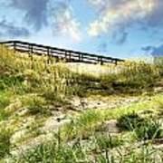 Tybee Island Dunes No.2 Art Print