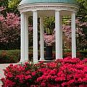 Unc Well In Spring Art Print