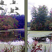 Unicorn Lake - Cross Your Eyes And Focus On The Middle Image Art Print