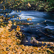 Union Creek In Autumn Art Print