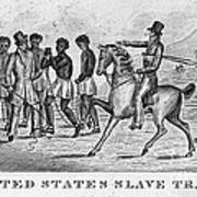United States Slave Trade Art Print by Photo Researchers