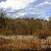 Unspoiled Prairie Landscape Art Print