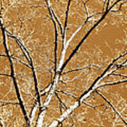 Untitled Tree Print by Carrie Kouri