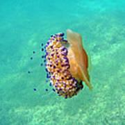 Unwelcome Jellyfish Art Print
