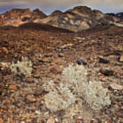 Usa, California, Death Valley, Barren Landscape Art Print