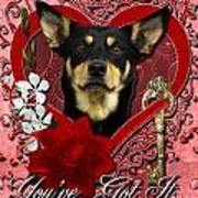 Valentines - Key To My Heart Australian Kelpie Print by Renae Laughner