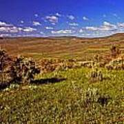 Valley At Fossil Butte Nm Art Print