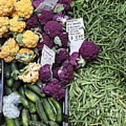 Variety Of Fresh Vegetables - 5d17900-long Art Print