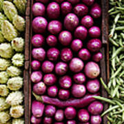 Vegetable Triptych Art Print by Jane Rix