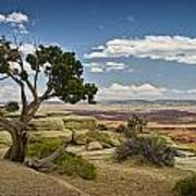View From A Mesa Art Print
